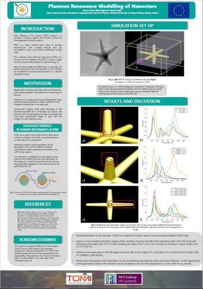 Plasmon Resonance Modelling of Nanostars